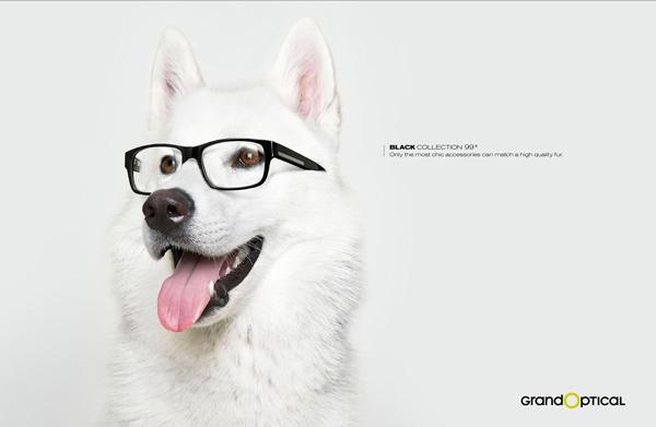 卖萌狗狗创意平面广告_干将莫邪[济南]v干将公绘制显微镜结构图图片